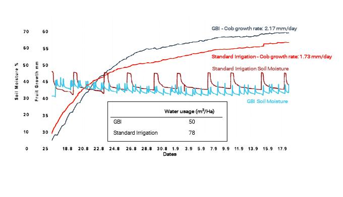 Trunk diameter growth vs. soli moisture and rainfalls